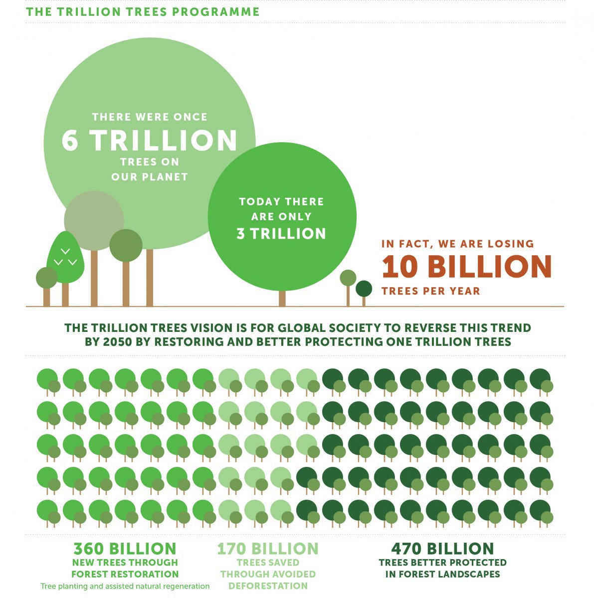 Infographic (Korea Forest Service)