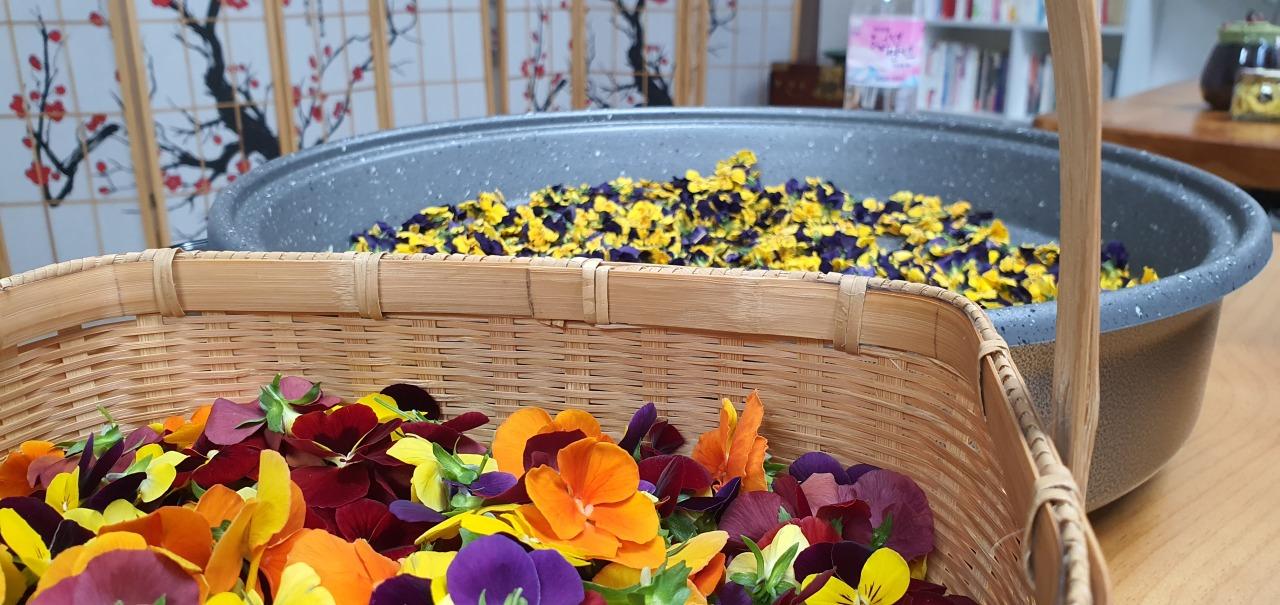A flower tea brewing session at Jwagusan Recreational Land (Kim Hae-yeon/ The Korea Herald)
