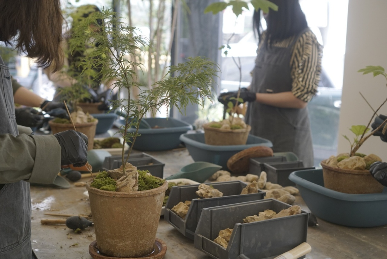 People attend a gardening class at Studio Conte in Gyeonggi Province in May. (Studio Conte)