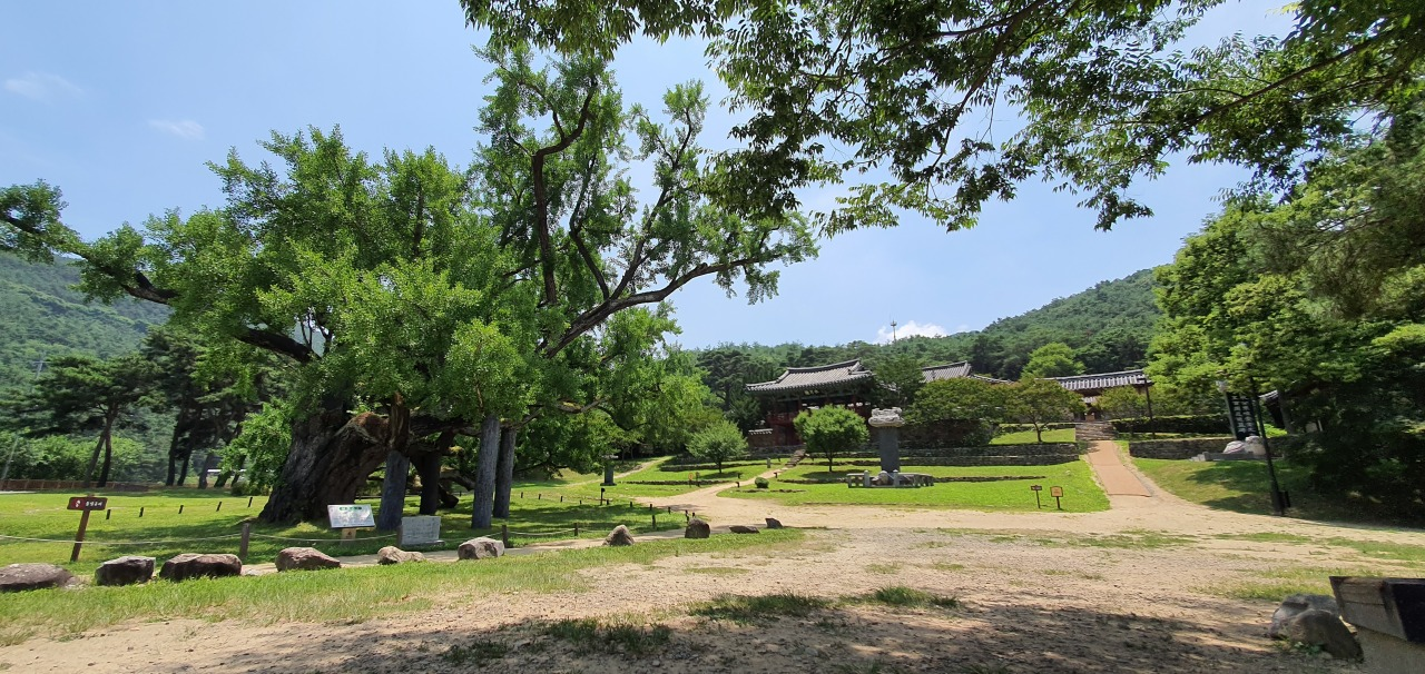 The picturesque landscape of Dodong Seowon is shown July 1. (Kim Hae-yeon/The Korea Herald)