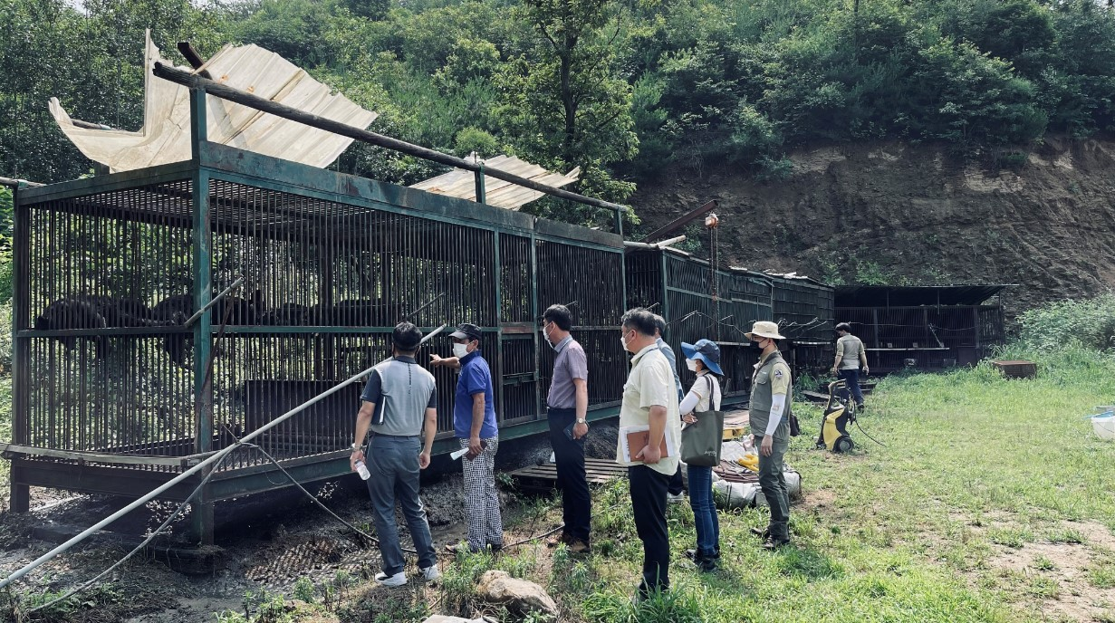 Officials inspect a bear farm in Yongin, South Korea, on Thursday in this photo provided by the Yongin city government. Two 3-year-old bears escaped from the farm two days earlier. (Yonhap)