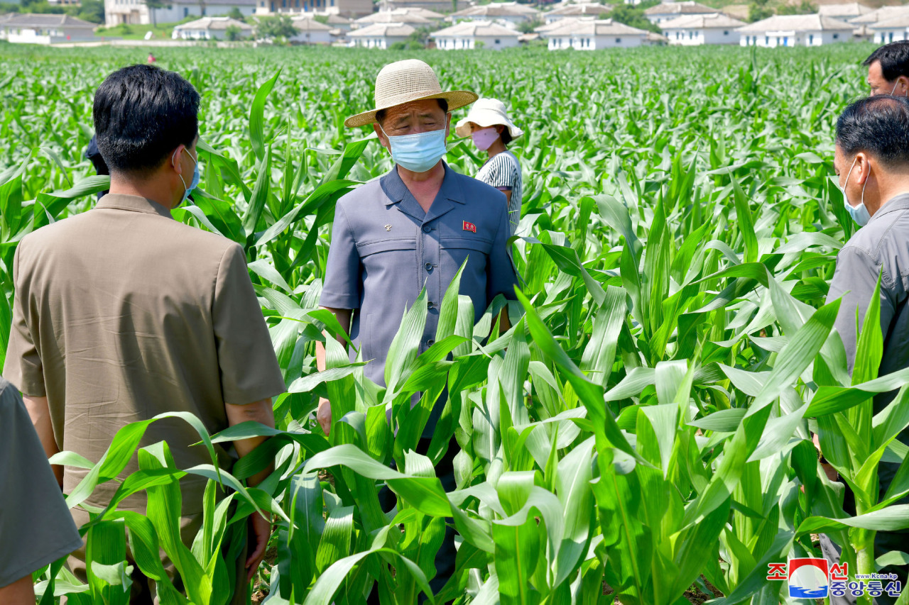 North Korean Premier Kim Tok-hun (2nd from L) inspects farms in South Hwanghae Province, in this photo released by the Korean Central News Agency on July 11, 2021. (Korean Central News Agency)