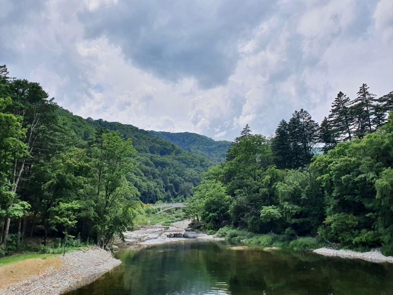 Mountain stream of Sogeum River nearby Weoljeongsa (Im Eun-byel / The Korea Herald)