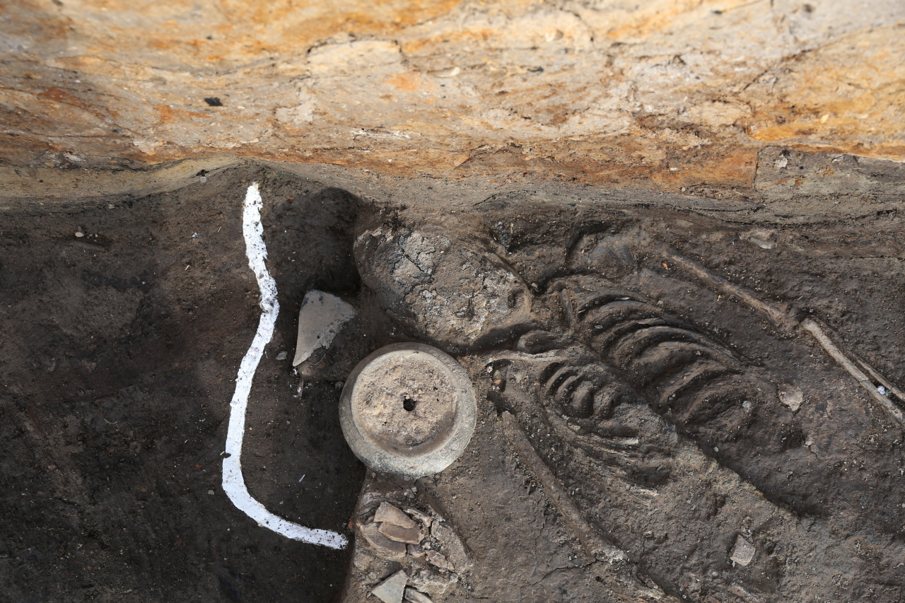 The upper body of a woman's remains from the Silla Kingdom, found at the site of the Wolseong palace in Gyeongju, North Gyeongsang Province. (CHA)