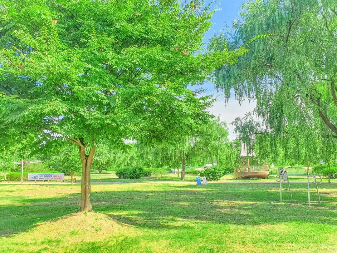 View of Gwangnaru Hangang Park in Gangdong-gu, eastern Seoul, shared by Azouz Chanez on Wednesday. (Instagram)