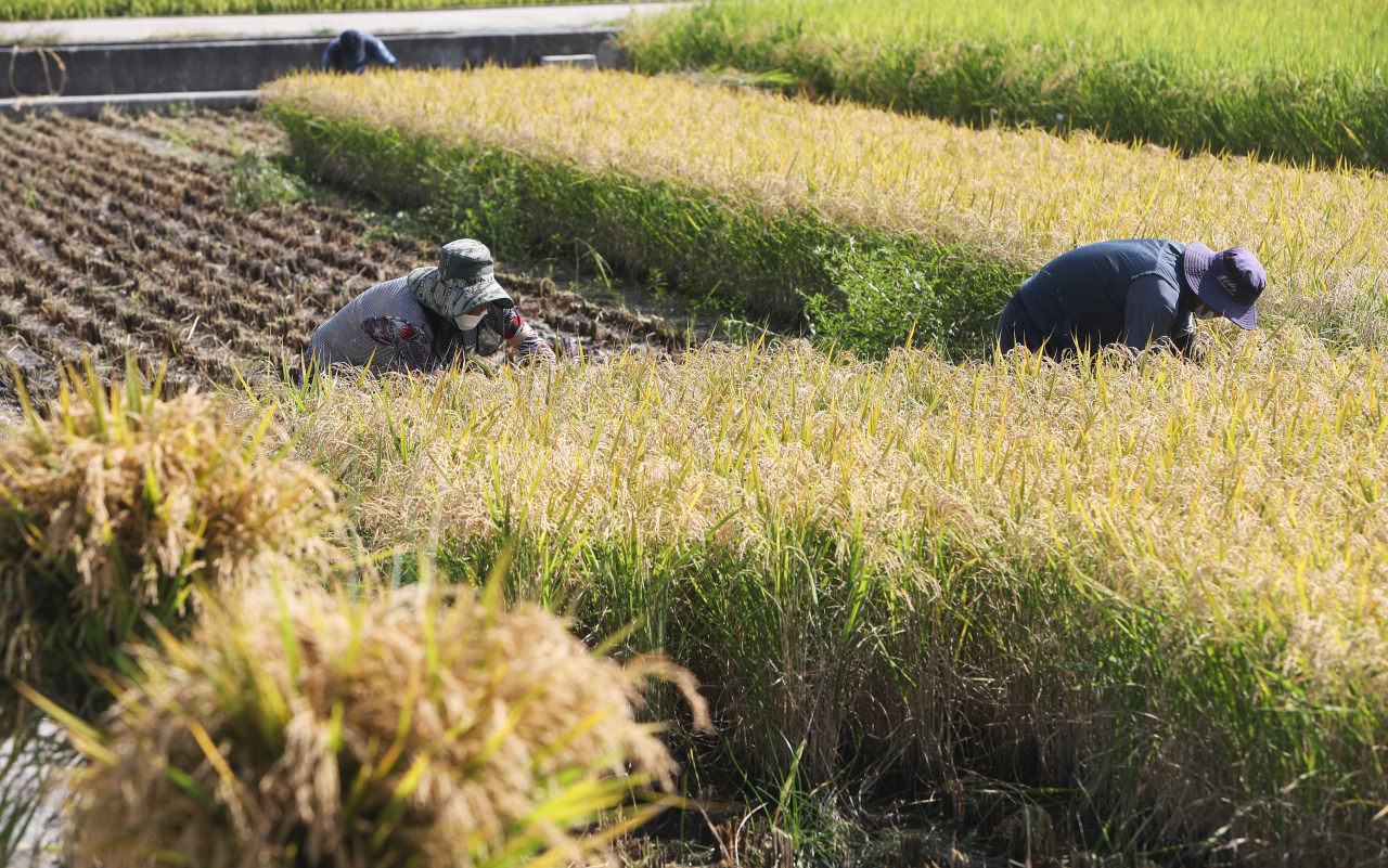Rural fields in Dongnae-myeon, Chuncheon, Gangwon Province (Yonhap)