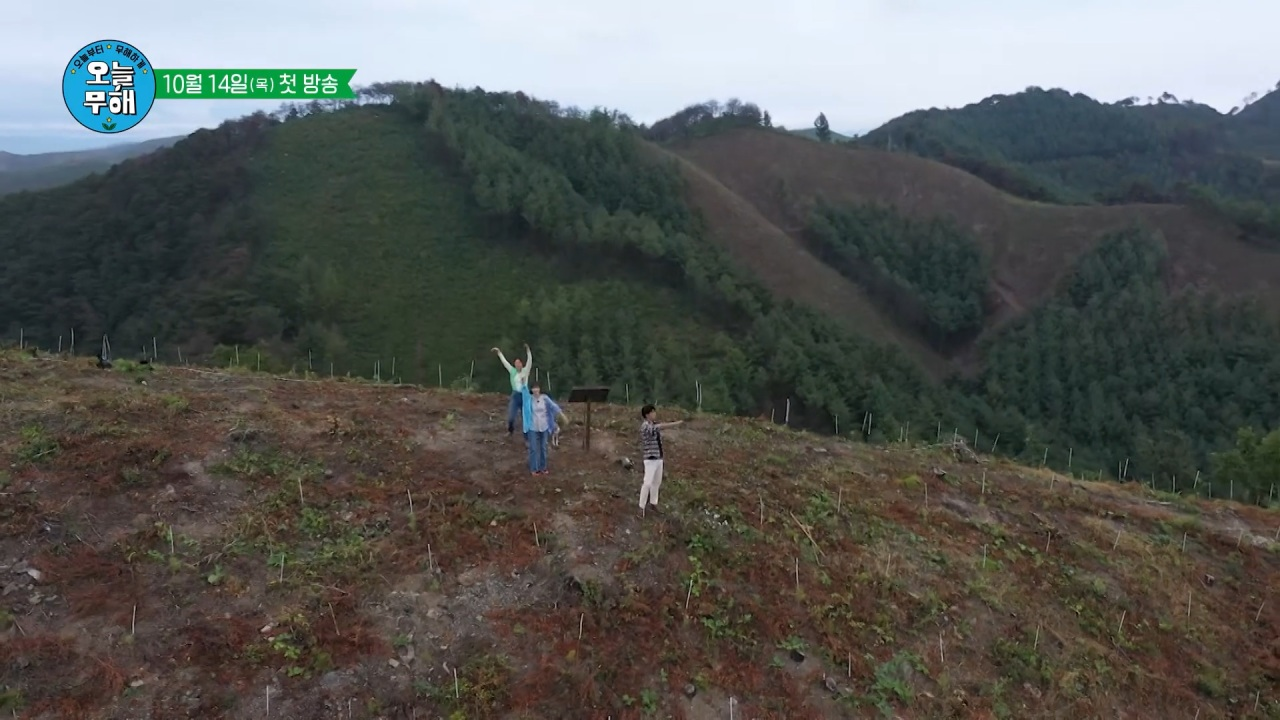 """A screenshot from the teaser for """"No Impact Day"""" shows three actors planting trees at the mountains of Andong, North Gyeongsang Province. (KBS)"""