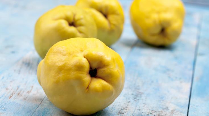 '과일망신은 모과?' 억울한 과일들