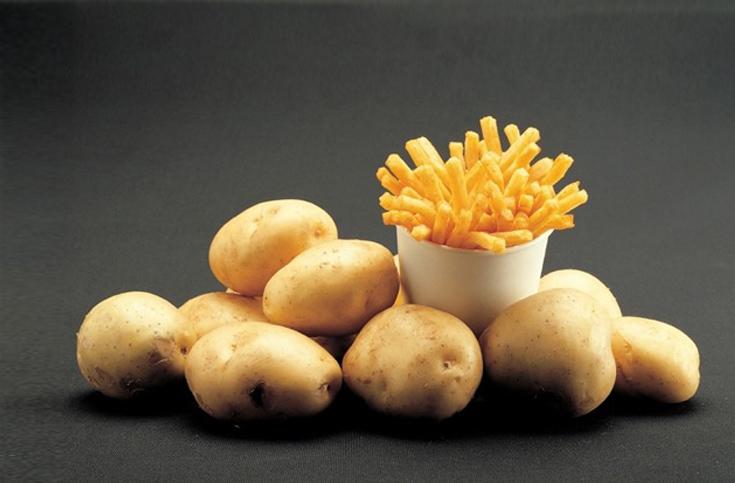 감자, 맘 놓고 먹어도 된다 vs 안 된다.
