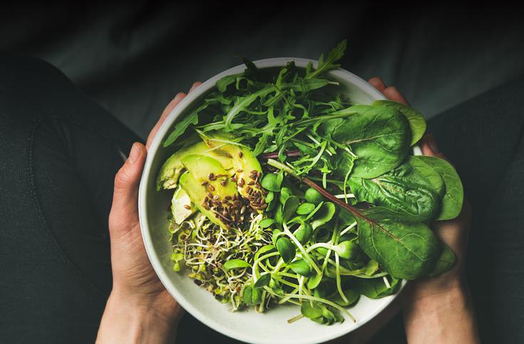 채식이 발생률 낮추는 질병은?