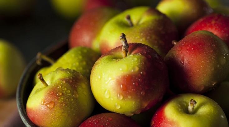 백설공주도 유기농 사과를 선택했다면…