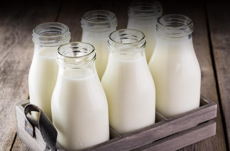 2018년 주목받을 식물성 우유 5가지