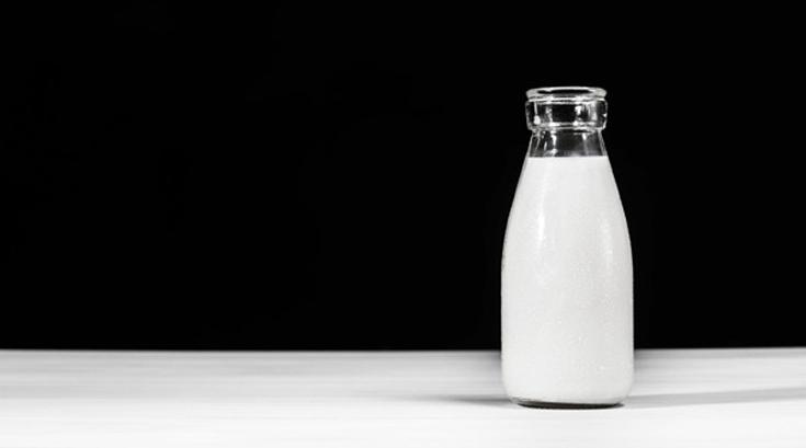 매일 우유 2잔이 체중 감량 도움된다…삼시세끼 식단은?
