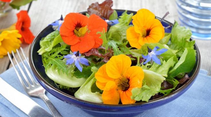 보기에 아름다운 꽃, 먹어도 좋다
