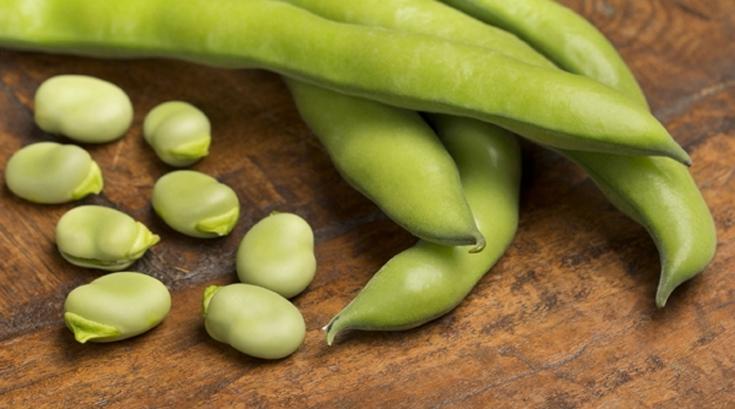 이탈리아 장수마을에서 즐겨 먹는 '파바콩'이 뭐죠?