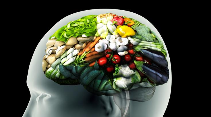맛의 최후 판단은 '뇌'가 한다