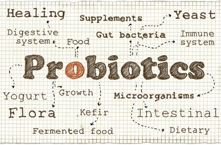 발효식품이 뜰 수밖에 없는 과학적 이유들