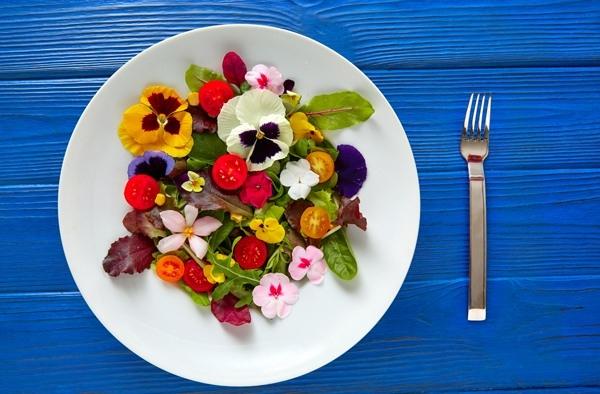 눈과 입이 즐거운 '먹어도 되는' 꽃