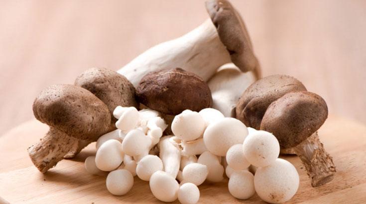 버섯이 체중관리에 좋은 이유