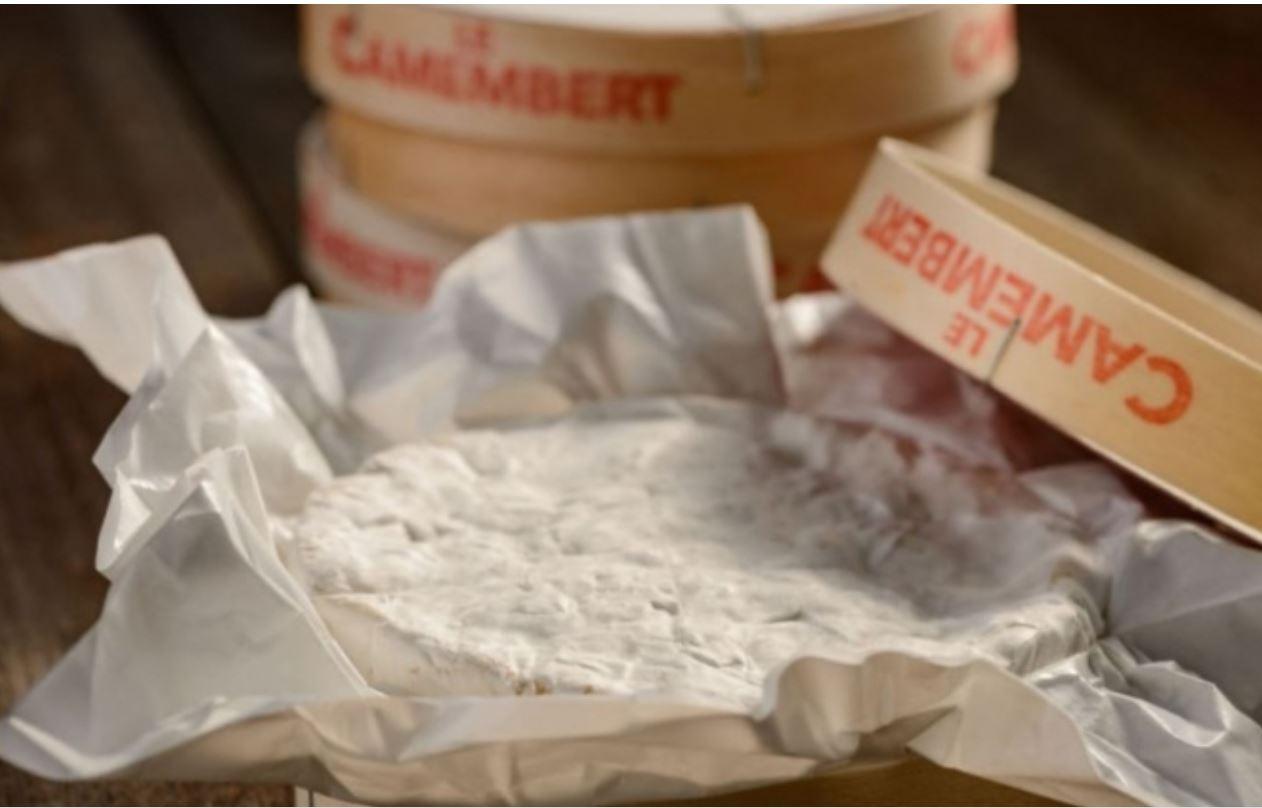 우유 안 먹는 일본, '자연 치즈'는 인기
