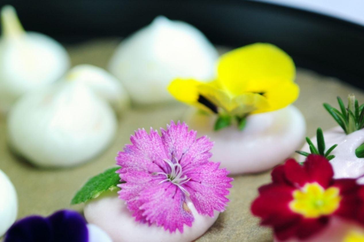 식용꽃, 코로나 위기에 먹으면 좋은 이유 두 가지
