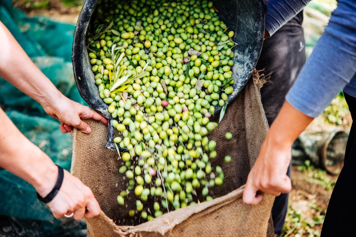 두려운 기후위기, 친환경 농업으로의 전환이 시급한 이유