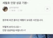 """세월호 구름 기현상 """"하늘도 간절했나?"""""""
