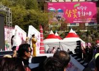 [포토뉴스]비슬산 참꽃 문화제 개...