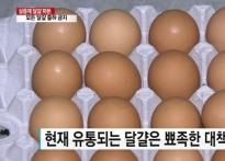 살충제 계란 조회서비스, 축산물품질평가원 홈..