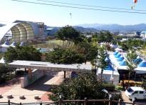 '2017 청도반시축제' 성료