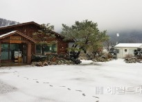 [포토뉴스]울릉도 나리분지 첫눈...