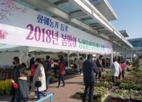 농협울산유통센터, '봄맞이 화훼...