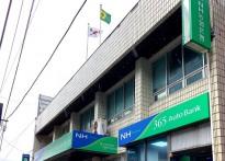 NH 농협 울릉군지부 공명선거 다...
