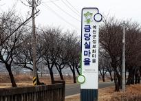 예천군 금당실 ·회룡포정보화마...