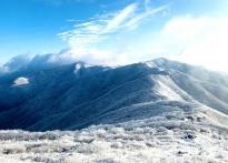 눈내린 소백산은 '순백의 겨울왕...