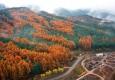 [헤럴드 포토]백두대간 수목원의..