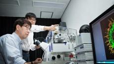 UNIST 민경태 교수팀, 뇌 신경세포 '길잡이 단백질' 찾았다