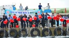 월성원자력, '온배수 양식 어패류 25만미' 방류
