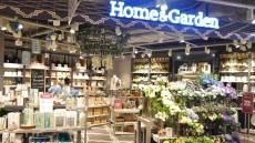 동아백화점 쇼핑점, 모던하우스 2배 확장 재개점