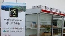 봉화산양삼(천심) 브랜드로 명품화 시동
