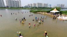 울산시, 29일부터 3일간, '태화강 재첩 체험' 행사 열어