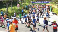 영주에서 처음으로 코리아 포레스트런(숲길마라톤)대회 열렸다.