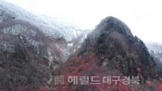 [포토뉴스]울릉도 나리분지 첫눈