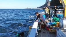 울릉연안바다 자체 생산한 어린 홍해 삼 20만미 방류