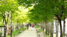 구로구, 서울시 자치구 중 유일하게 선정