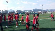 '경주컵 2017 동계클럽 유소년축구' 14일 팡파르