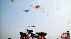 한국연협회, 2017년 인도 국제 연 날리기 대회 및 인도국제 연 축제 참가
