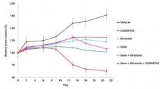 크리스탈지노믹스, 영국 유력 의학전문지에 '췌장암 분자표적항암제 효능' 논문 발표