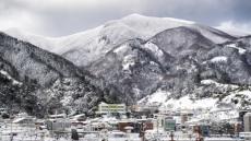 눈 폭탄 맞은 울릉도 35년 만에 최대 폭설
