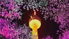 """""""이월드로 오세요""""…제6회 '별빛 벚꽃축제' 오는 25일 개막"""